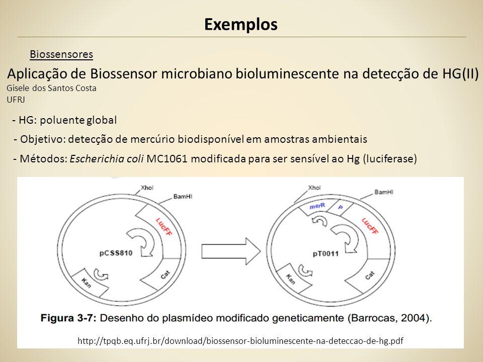 Exemplos Biossensores Aplicação de Biossensor microbiano bioluminescente na detecção de HG(II) Gisele dos Santos Costa UFRJ - HG: poluente global - Ob
