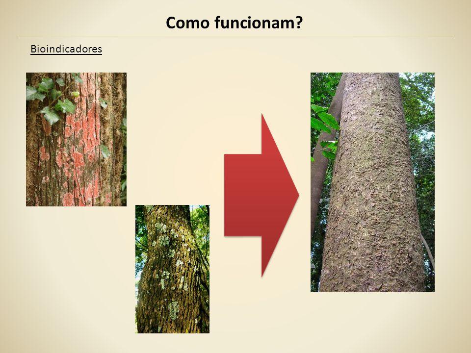 Exemplos *Vide Errata no último slide