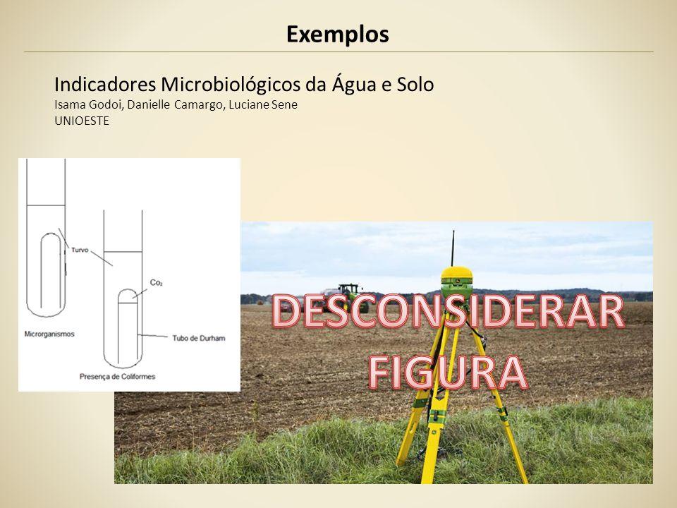 Exemplos Indicadores Microbiológicos da Água e Solo Isama Godoi, Danielle Camargo, Luciane Sene UNIOESTE
