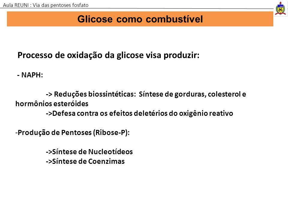 Glicose como combustível Aula REUNI : Via das pentoses fosfato Processo de oxidação da glicose visa produzir: - NAPH: -> Reduções biossintéticas: Sínt