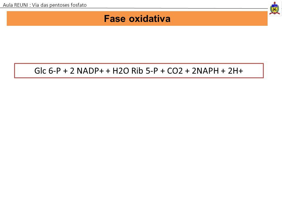 Glc 6-P + 2 NADP+ + H2O Rib 5-P + CO2 + 2NAPH + 2H+ Fase oxidativa Aula REUNI : Via das pentoses fosfato