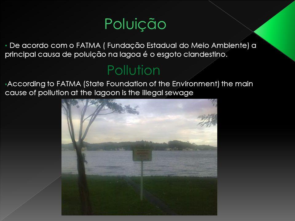 De acordo com o FATMA ( Fundação Estadual do Meio Ambiente) a principal causa de poluição na lagoa é o esgoto clandestino. Pollution According to FATM