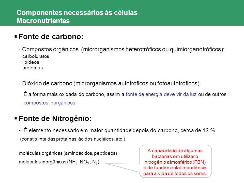 Componentes necessários às células Macronutrientes Fonte de carbono: - Compostos orgânicos (microrganismos heterotróficos ou quimiorganotróficos): car