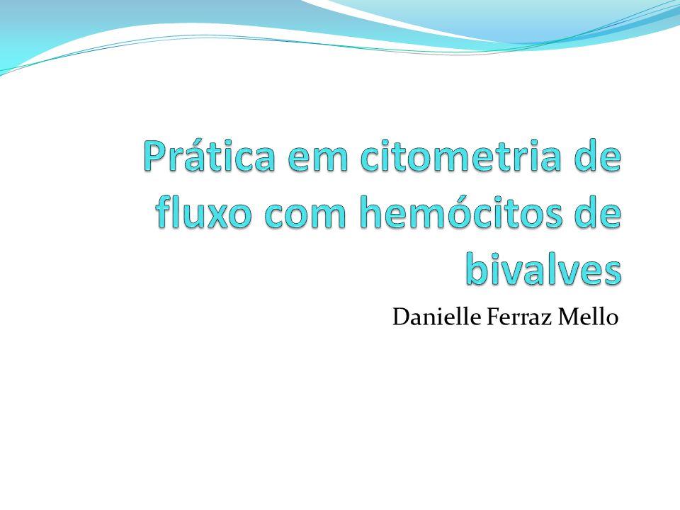 Danielle Ferraz Mello