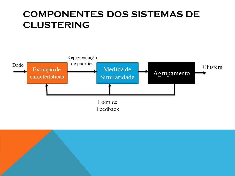 COMPONENTES DOS SISTEMAS DE CLUSTERING Clusters Representação de padrões Dado Extração de características Medida de Similaridade Agrupamento Loop de Feedback