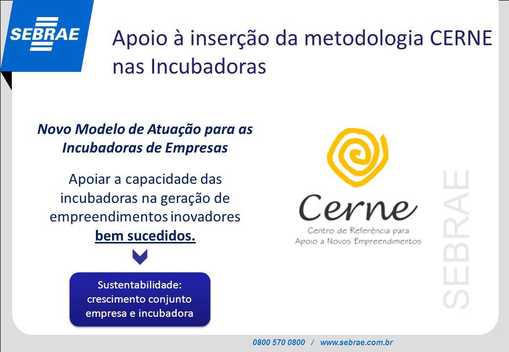 0800 570 0800 / www.sebrae.com.br SEBRAE Novo Modelo de Atuação para as Incubadoras de Empresas Apoiar a capacidade das incubadoras na geração de empr