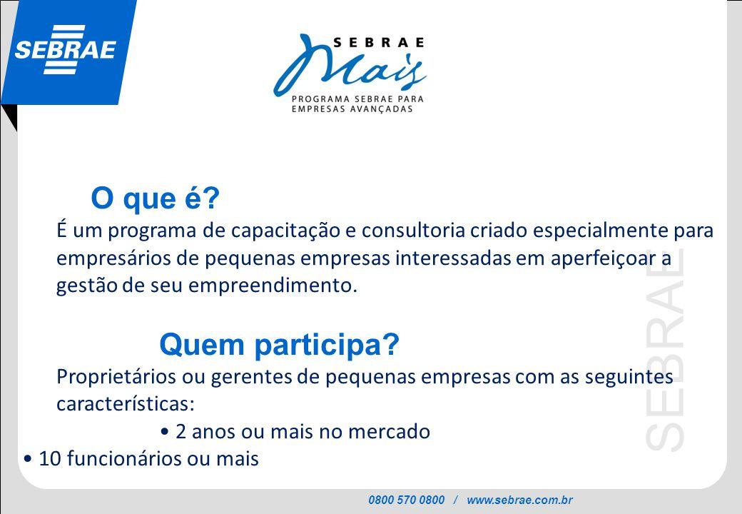 0800 570 0800 / www.sebrae.com.br SEBRAE O que é? É um programa de capacitação e consultoria criado especialmente para empresários de pequenas empresa