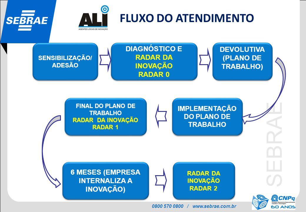 0800 570 0800 / www.sebrae.com.br SEBRAE FINAL DO PLANO DE TRABALHO RADAR DA INOVAÇÃO RADAR 1 FINAL DO PLANO DE TRABALHO RADAR DA INOVAÇÃO RADAR 1 DIA