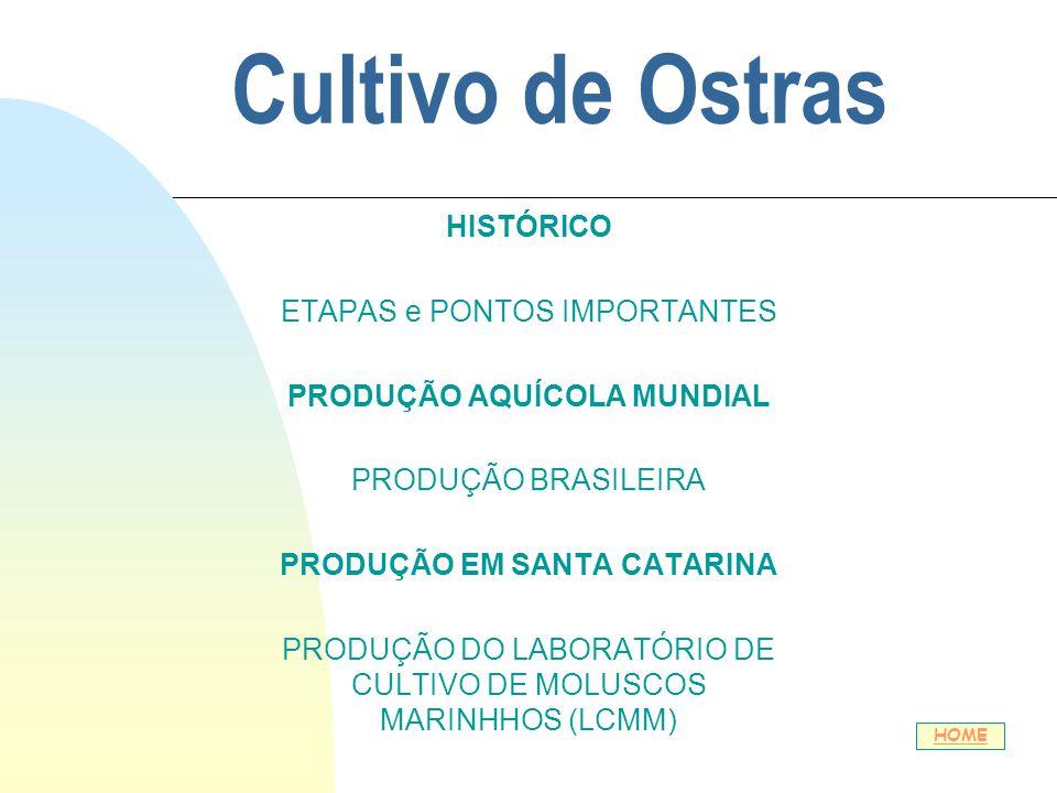 Cultivo de Ostras HISTÓRICO ETAPAS e PONTOS IMPORTANTES PRODUÇÃO AQUÍCOLA MUNDIAL PRODUÇÃO BRASILEIRA PRODUÇÃO EM SANTA CATARINA PRODUÇÃO DO LABORATÓR