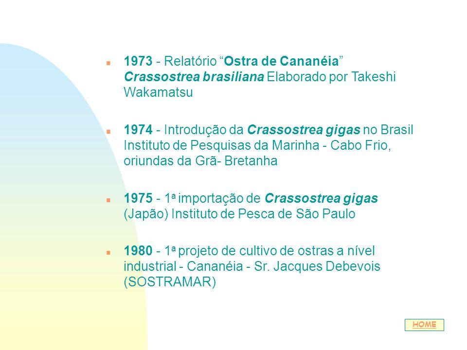 n 1973 - Relatório Ostra de Cananéia Crassostrea brasiliana Elaborado por Takeshi Wakamatsu n 1974 - Introdução da Crassostrea gigas no Brasil Institu