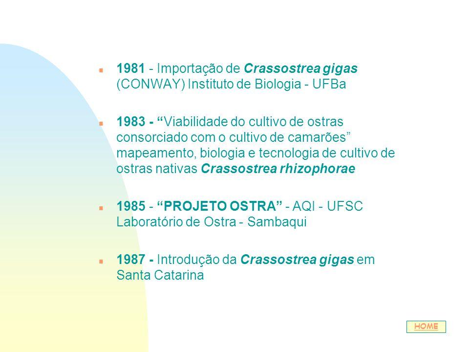 n 1981 - Importação de Crassostrea gigas (CONWAY) Instituto de Biologia - UFBa n 1983 - Viabilidade do cultivo de ostras consorciado com o cultivo de