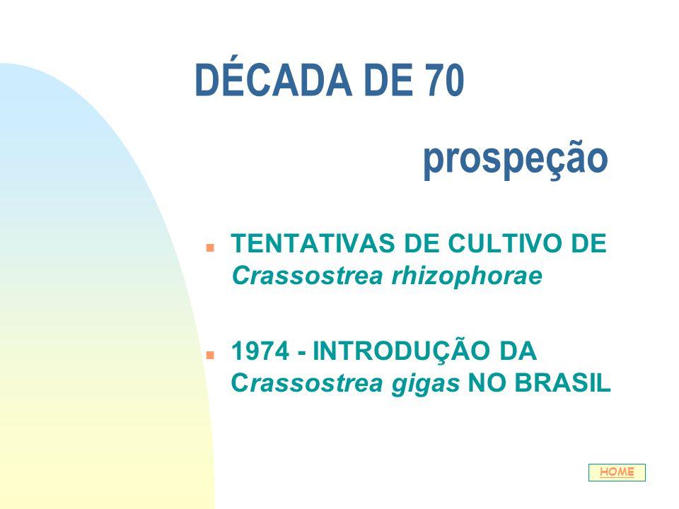 DÉCADA DE 70 prospeção n TENTATIVAS DE CULTIVO DE Crassostrea rhizophorae n 1974 - INTRODUÇÃO DA Crassostrea gigas NO BRASIL HOME