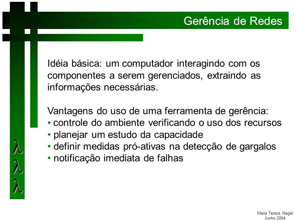 Maria Tereza Nagel Junho 2004 Etapas no processo de gerenciamento: