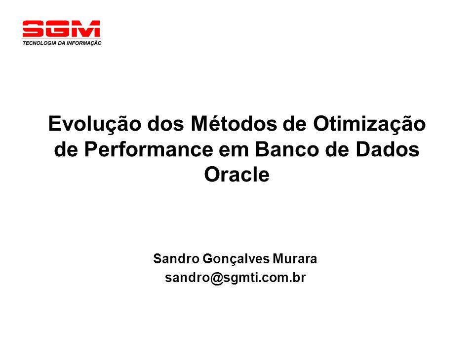 Agenda Histórico sobre o Oracle Database Server Performance Arquitetura Oracle Otimizador Oracle Evolução Tendências Futuras Perguntas