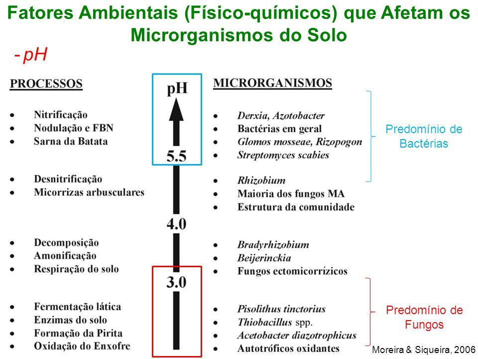 Fatores Ambientais (Físico-químicos) que Afetam os Microrganismos do Solo -pH Moreira & Siqueira, 2006 Predomínio de Bactérias Predomínio de Fungos