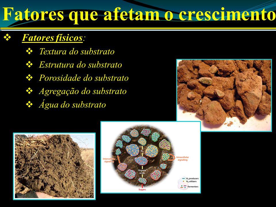 Fatores que afetam o crescimento Fatores físicos: Textura do substrato Estrutura do substrato Porosidade do substrato Agregação do substrato Água do substrato