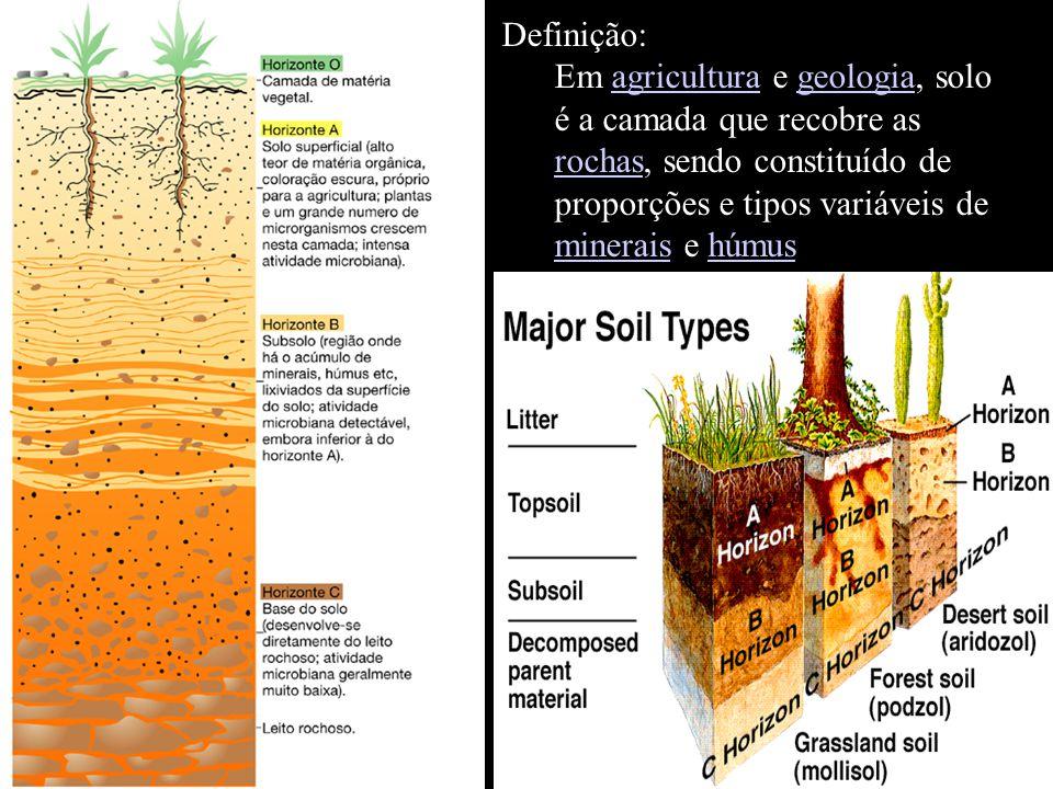 Definição: Em agricultura e geologia, solo é a camada que recobre as rochas, sendo constituído de proporções e tipos variáveis de minerais e húmusagriculturageologia rochas mineraishúmus