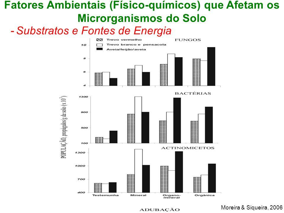 Fatores Ambientais (Físico-químicos) que Afetam os Microrganismos do Solo -Substratos e Fontes de Energia Moreira & Siqueira, 2006
