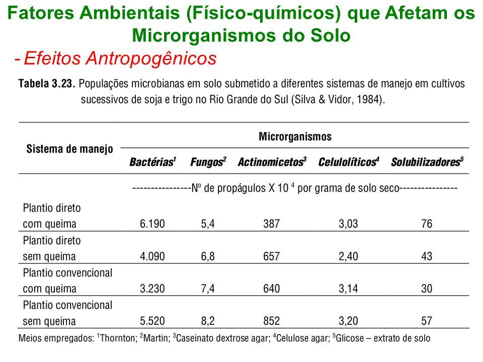 Fatores Ambientais (Físico-químicos) que Afetam os Microrganismos do Solo -Efeitos Antropogênicos