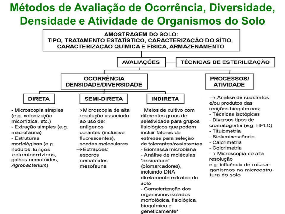 Métodos de Avaliação de Ocorrência, Diversidade, Densidade e Atividade de Organismos do Solo