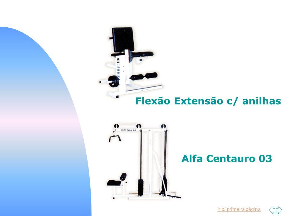Ir p/ primeira página Flexão Extensão c/ anilhas Alfa Centauro 03
