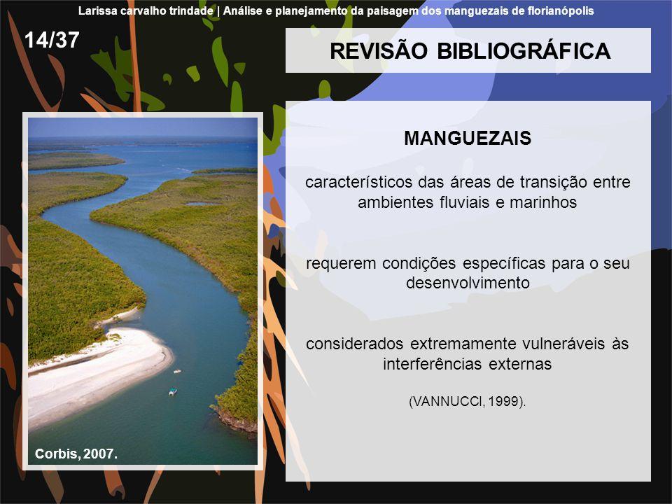 REVISÃO BIBLIOGRÁFICA MANGUEZAIS característicos das áreas de transição entre ambientes fluviais e marinhos requerem condições específicas para o seu
