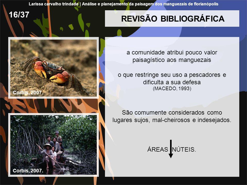 REVISÃO BIBLIOGRÁFICA a comunidade atribui pouco valor paisagístico aos manguezais o que restringe seu uso a pescadores e dificulta a sua defesa (MACE