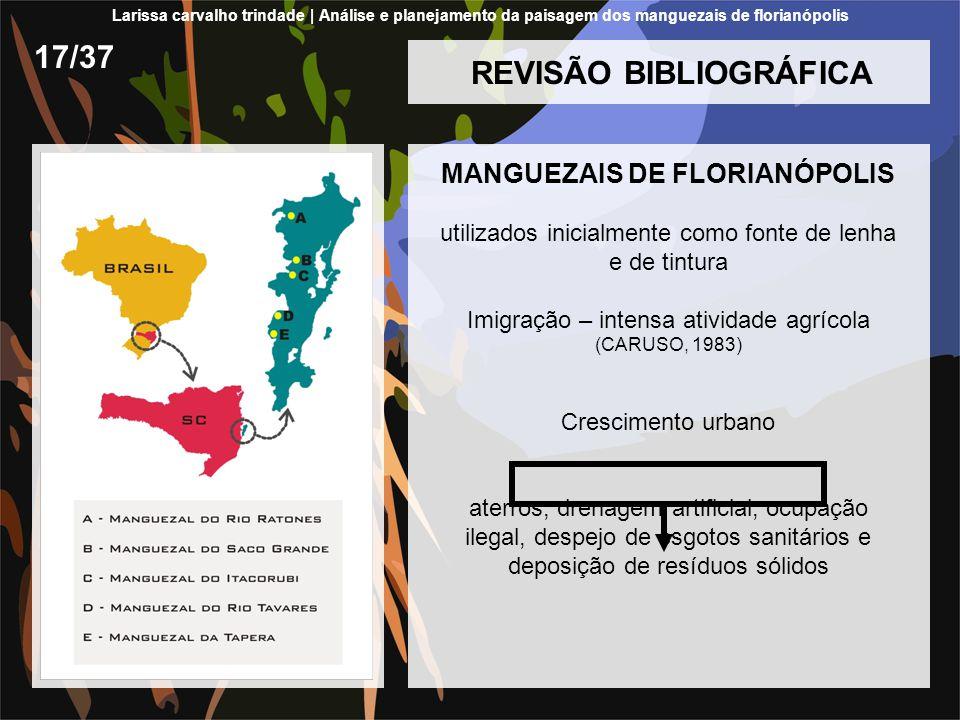 REVISÃO BIBLIOGRÁFICA MANGUEZAIS DE FLORIANÓPOLIS utilizados inicialmente como fonte de lenha e de tintura Imigração – intensa atividade agrícola (CAR