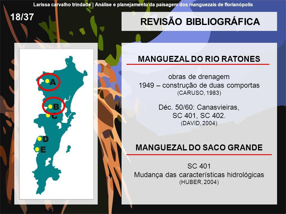REVISÃO BIBLIOGRÁFICA MANGUEZAL DO RIO RATONES obras de drenagem 1949 – construção de duas comportas (CARUSO, 1983) Déc. 50/60: Canasvieiras, SC 401,