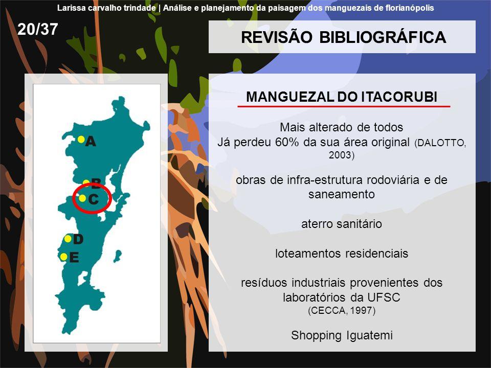 REVISÃO BIBLIOGRÁFICA MANGUEZAL DO ITACORUBI Mais alterado de todos Já perdeu 60% da sua área original (DALOTTO, 2003) obras de infra-estrutura rodoviária e de saneamento aterro sanitário loteamentos residenciais resíduos industriais provenientes dos laboratórios da UFSC (CECCA, 1997) Shopping Iguatemi 20/37 Larissa carvalho trindade | Análise e planejamento da paisagem dos manguezais de florianópolis