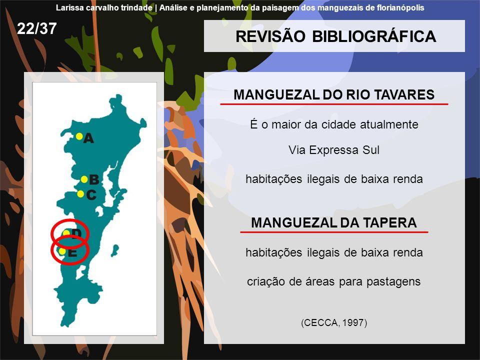 REVISÃO BIBLIOGRÁFICA MANGUEZAL DO RIO TAVARES É o maior da cidade atualmente Via Expressa Sul habitações ilegais de baixa renda MANGUEZAL DA TAPERA h