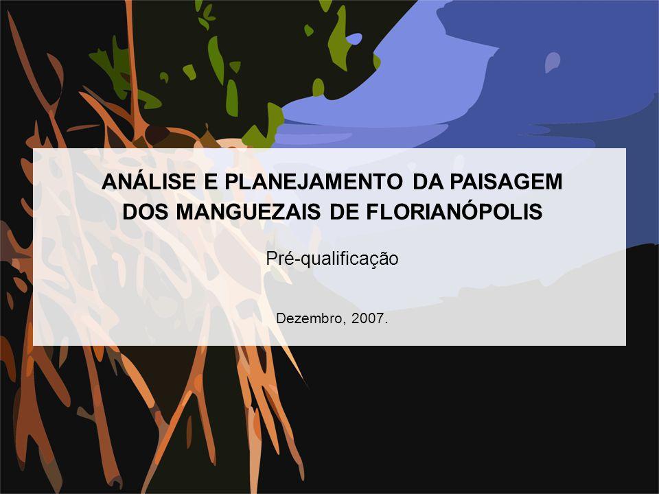 ANÁLISE E PLANEJAMENTO DA PAISAGEM DOS MANGUEZAIS DE FLORIANÓPOLIS Pré-qualificação Dezembro, 2007.