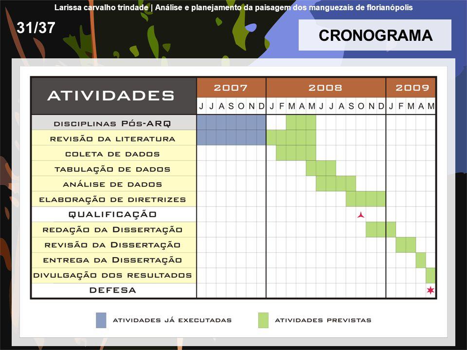 CRONOGRAMA 31/37 Larissa carvalho trindade | Análise e planejamento da paisagem dos manguezais de florianópolis