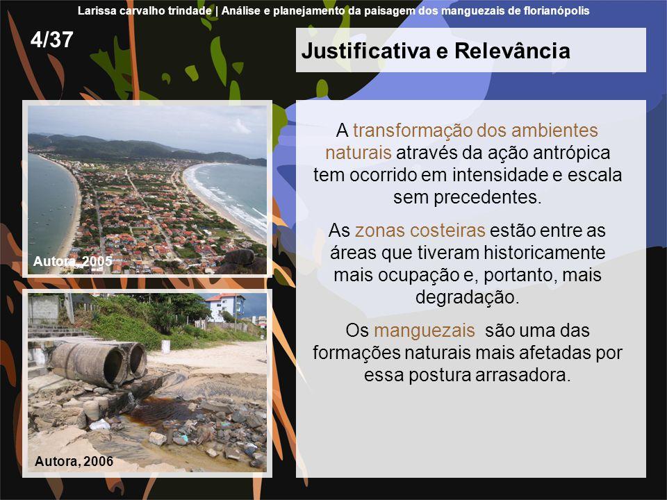 Justificativa e Relevância Florianópolis: cinco manguezais diversas alterações degradantes iniciadas com a colonização da Ilha, prosseguem até os dias atuais.