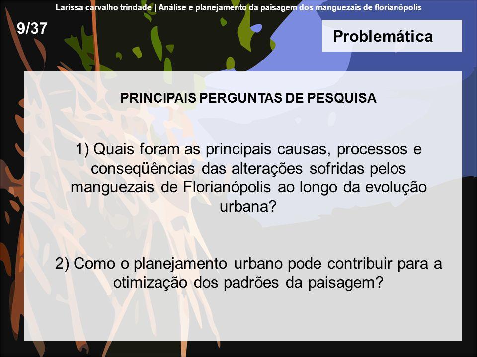 Problemática PRINCIPAIS PERGUNTAS DE PESQUISA 1) Quais foram as principais causas, processos e conseqüências das alterações sofridas pelos manguezais de Florianópolis ao longo da evolução urbana.