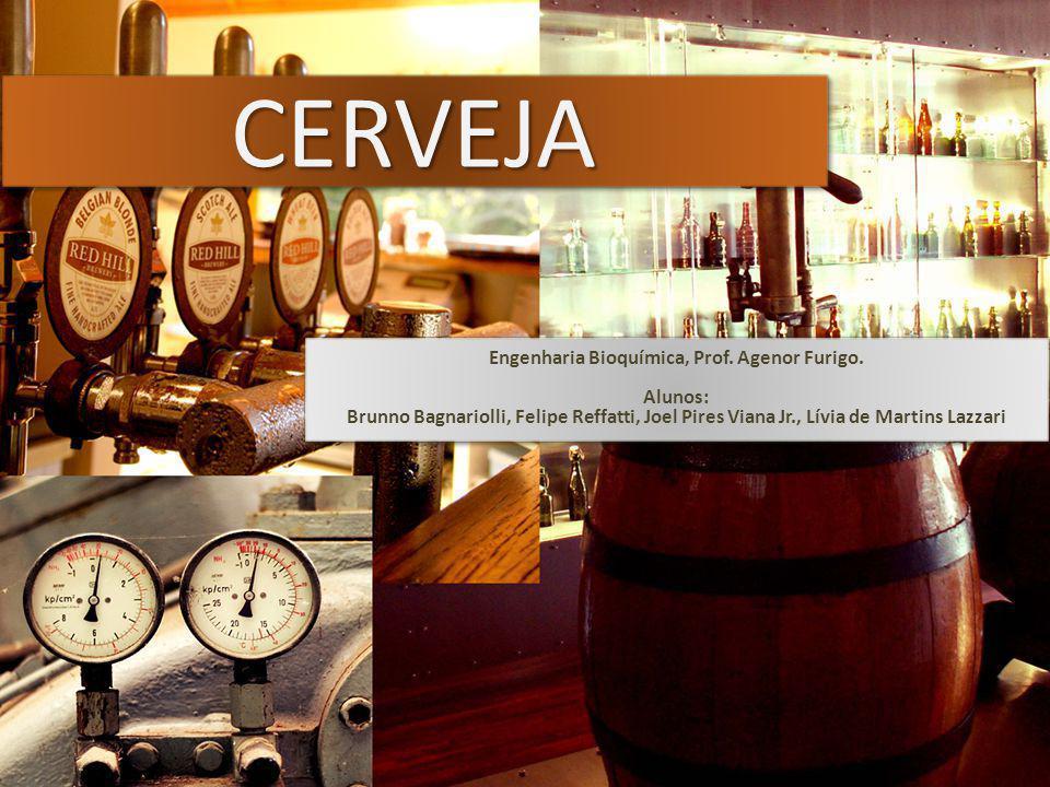 FermentaçãoFermentação Alta fermentação (ale); Baixa fermentação (lager); 01/06/2009 - Cerveja - Engenharia Bioquímica, Prof.