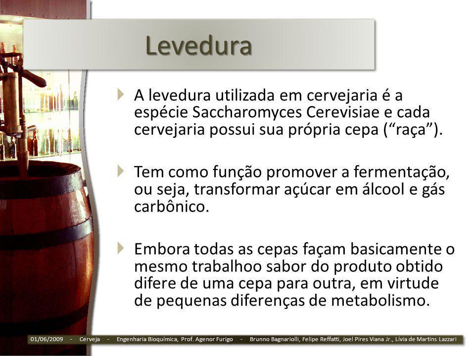 LeveduraLevedura A levedura utilizada em cervejaria é a espécie Saccharomyces Cerevisiae e cada cervejaria possui sua própria cepa (raça). Tem como fu