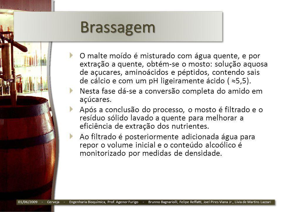 BrassagemBrassagem O malte moído é misturado com água quente, e por extração a quente, obtém-se o mosto: solução aquosa de açucares, aminoácidos e pép