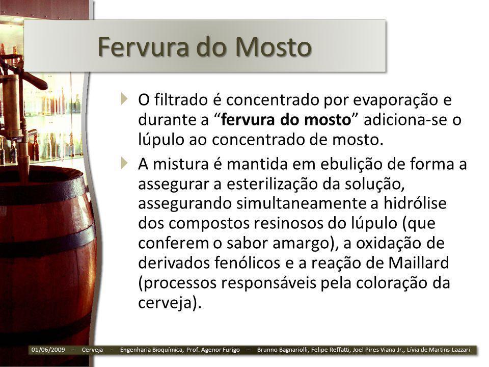Fervura do Mosto O filtrado é concentrado por evaporação e durante a fervura do mosto adiciona-se o lúpulo ao concentrado de mosto. A mistura é mantid