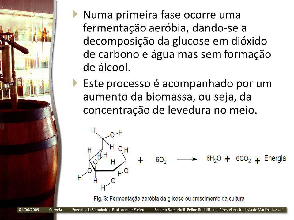 Numa primeira fase ocorre uma fermentação aeróbia, dando-se a decomposição da glucose em dióxido de carbono e água mas sem formação de álcool. Este pr