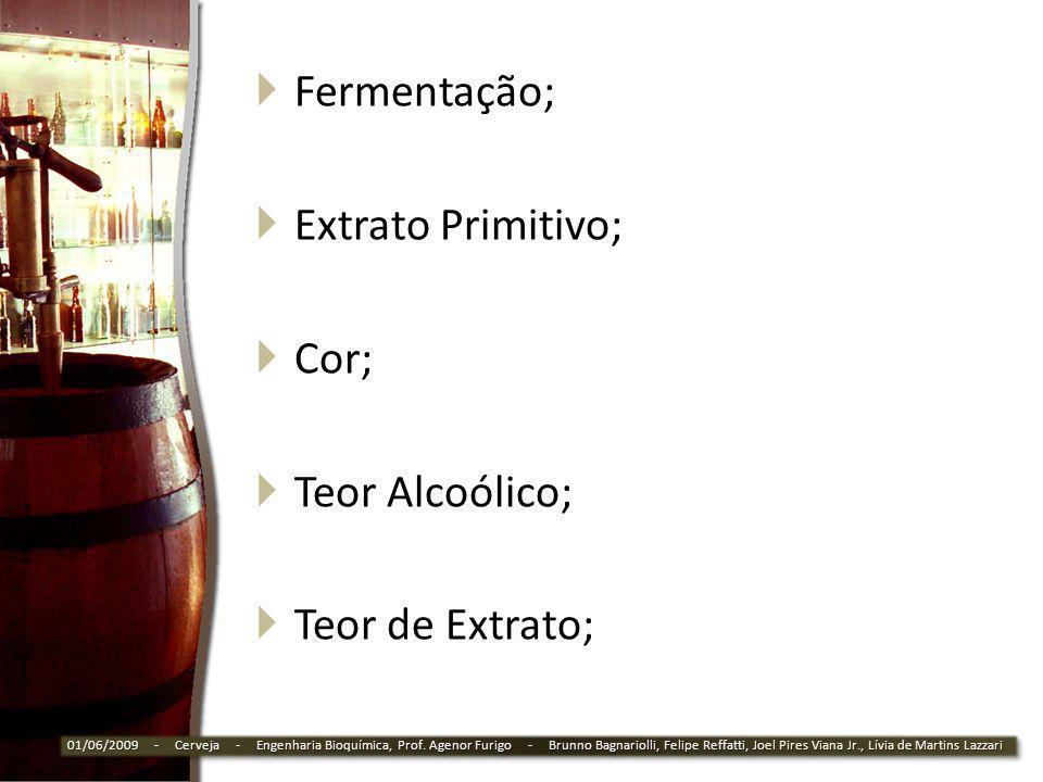 Fermentação; Extrato Primitivo; Cor; Teor Alcoólico; Teor de Extrato; 01/06/2009 - Cerveja - Engenharia Bioquímica, Prof. Agenor Furigo - Brunno Bagna