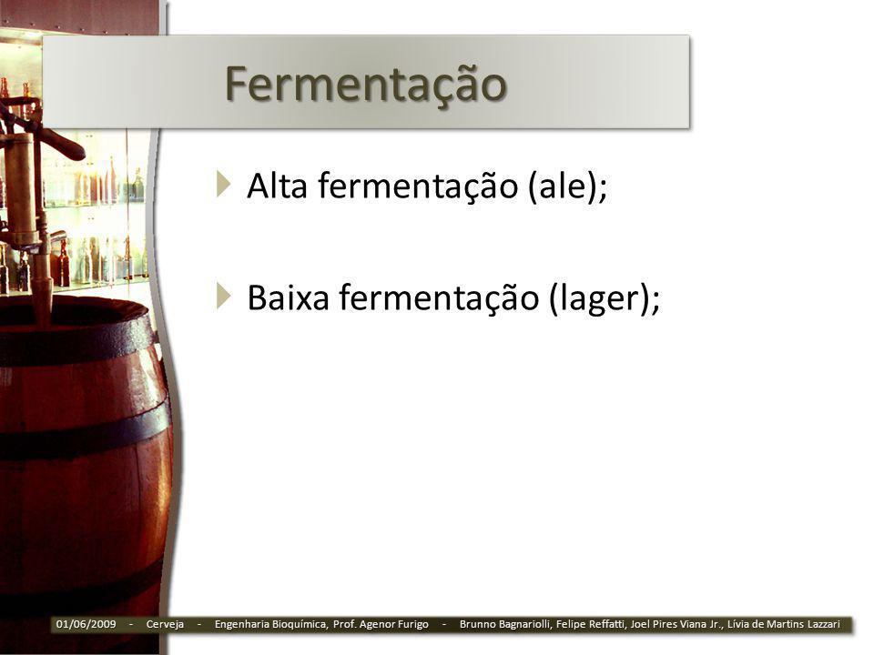 FermentaçãoFermentação Alta fermentação (ale); Baixa fermentação (lager); 01/06/2009 - Cerveja - Engenharia Bioquímica, Prof. Agenor Furigo - Brunno B