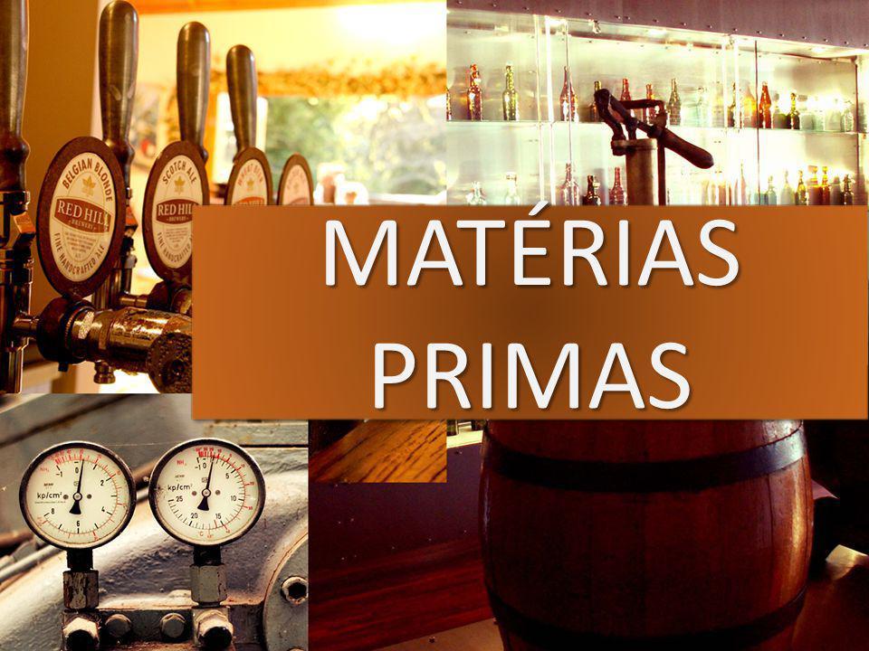 Água; Cevada; Malte; Lúpulo; Levedura.01/06/2009 - Cerveja - Engenharia Bioquímica, Prof.