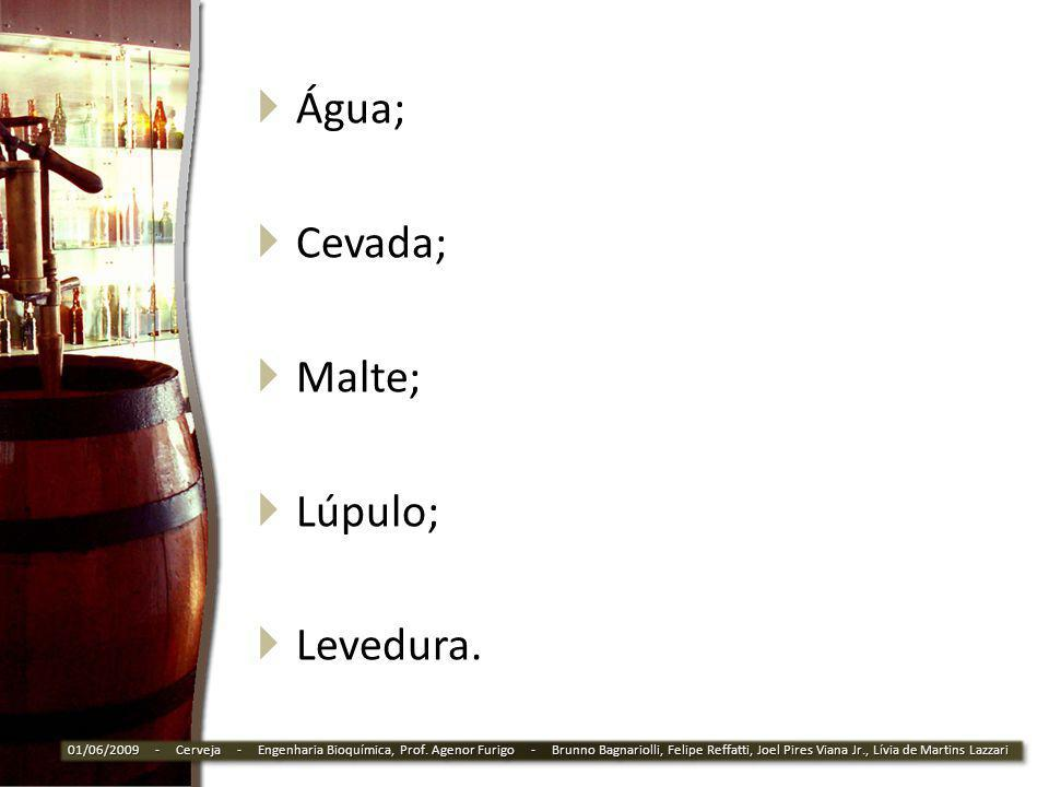 Água; Cevada; Malte; Lúpulo; Levedura. 01/06/2009 - Cerveja - Engenharia Bioquímica, Prof. Agenor Furigo - Brunno Bagnariolli, Felipe Reffatti, Joel P