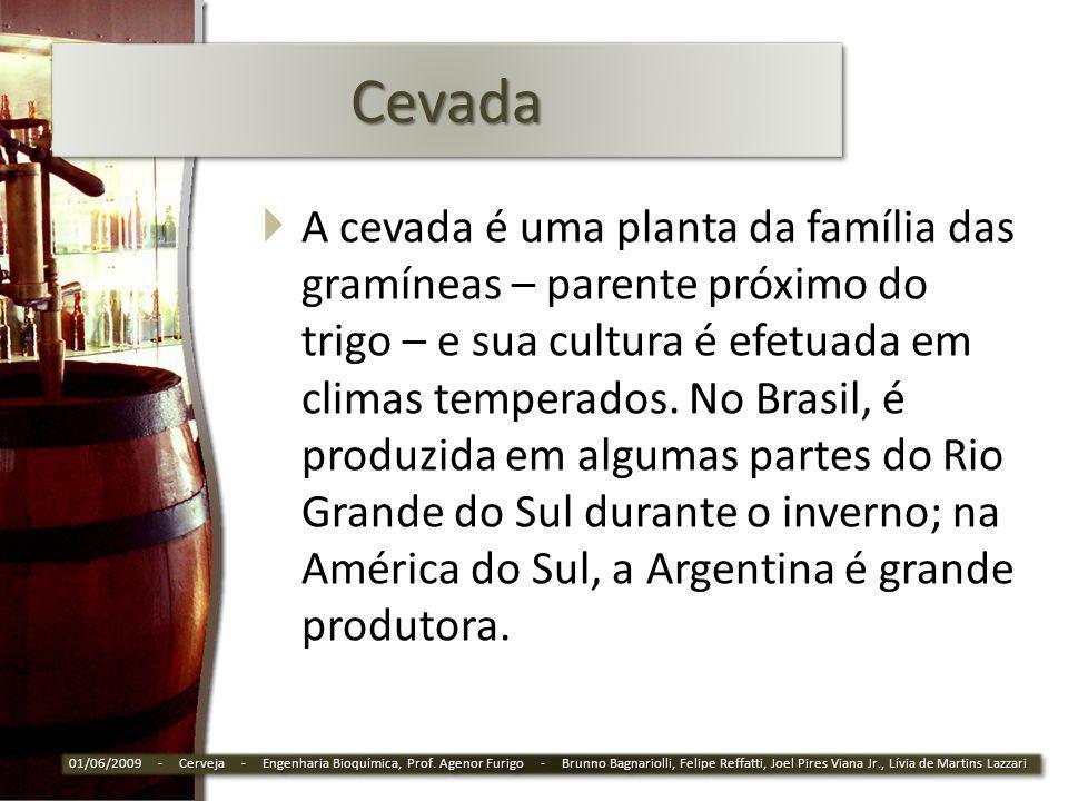 CevadaCevada A cevada é uma planta da família das gramíneas – parente próximo do trigo – e sua cultura é efetuada em climas temperados. No Brasil, é p