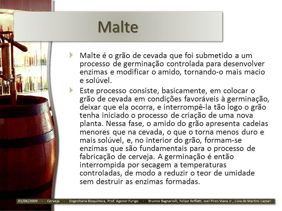MalteMalte Malte é o grão de cevada que foi submetido a um processo de germinação controlada para desenvolver enzimas e modificar o amido, tornando-o