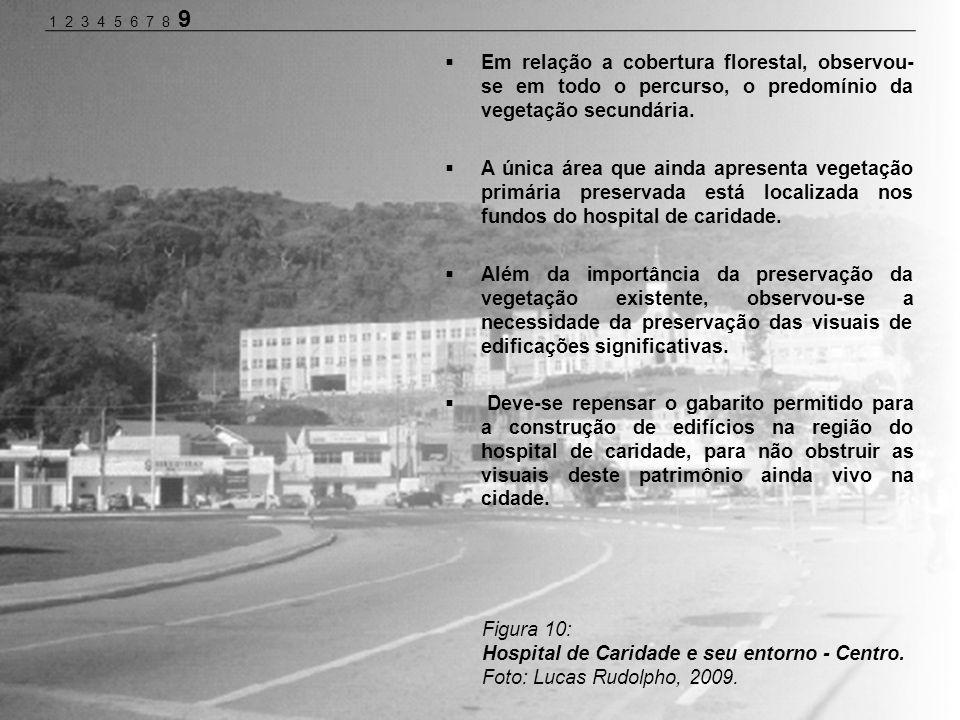 Figura 10: Hospital de Caridade e seu entorno - Centro. Foto: Lucas Rudolpho, 2009. Em relação a cobertura florestal, observou- se em todo o percurso,