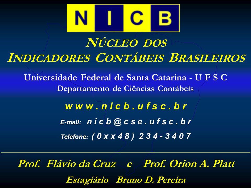 N ÚCLEO DOS I NDICADORES C ONTÁBEIS B RASILEIROS w w w.