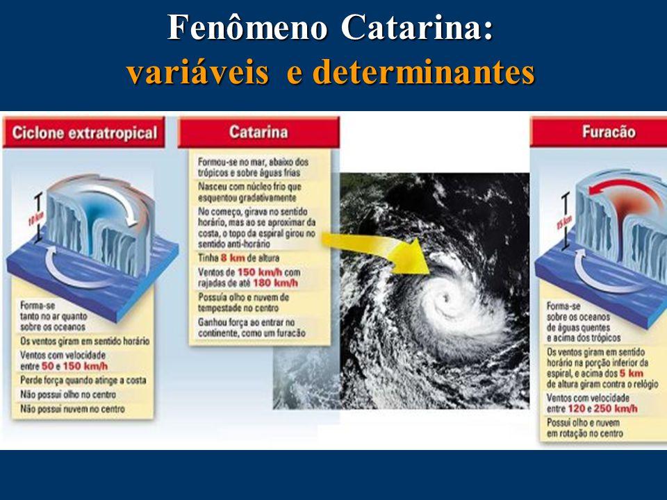 Fenômeno Catarina: variáveis e determinantes