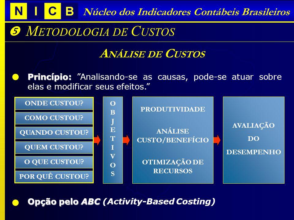 Núcleo dos Indicadores Contábeis Brasileiros M ETODOLOGIA DE C USTOS A NÁLISE DE C USTOS Princípio: Princípio: Analisando-se as causas, pode-se atuar